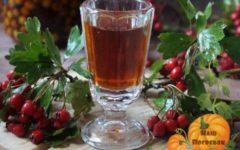 nalivka iz svezhih jagod bojaryshnika na vodke