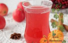 kompot-iz-boyaryshnika-na-zimu-recept