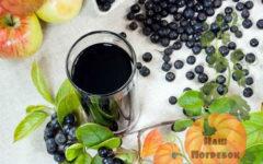 kompot-iz-chernoplodnoj-ryabiny-na-zimu-prostoj-recept