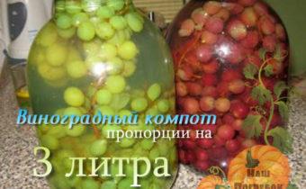 kompot-iz-vinograda-na-zimu-na-3-litrovuyu-banku