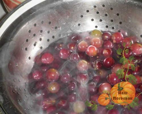 blanshirovanie-vinograda