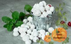 klyukva-v-saharnoj-pudre-v-domashnih-usloviyah-recept