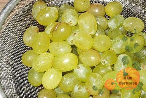 vinograd-v-durshlage