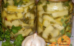 kabachki-kak-griby-na-zimu-vkusnyj-recept-zagotovki