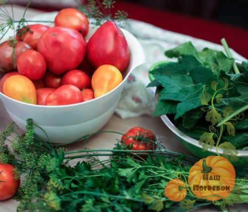 pomidory-i-listya-smorodiny