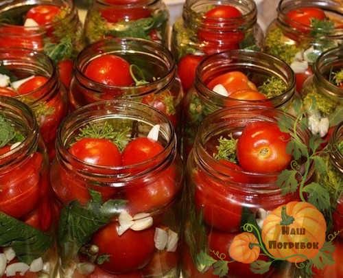 razlozhennye-po-bankam-pomidory