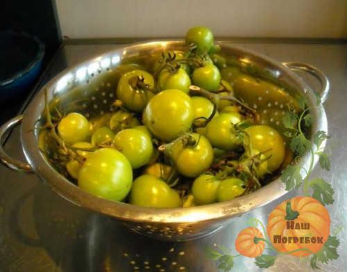 zelenye-pomidory-na-durshlage