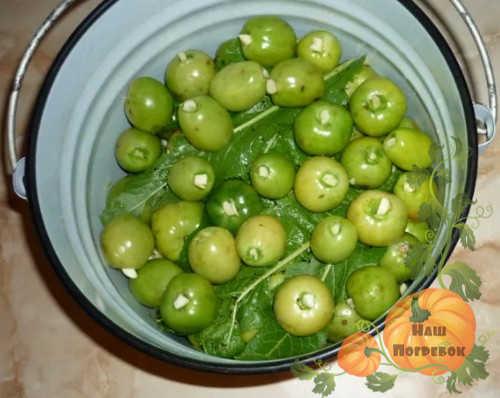 zelenye-pomidory-v-vedre