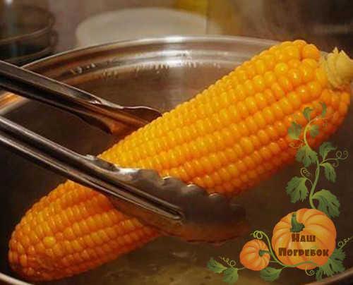 blanshirovanie-kukuruzy