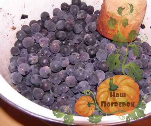 podgotovka-vinograda-dlya-vina