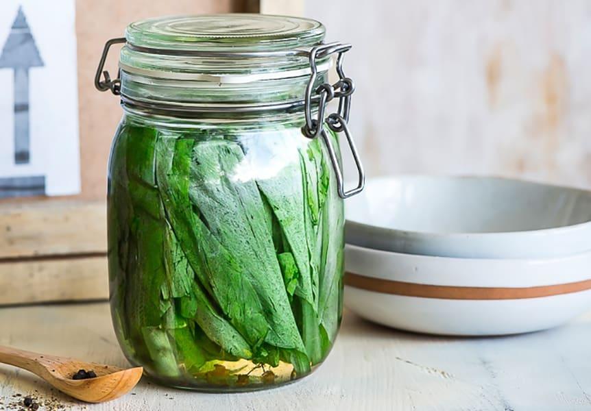 cheremsha-marinovannaya-vkusnye-recepty-prigotovleniya
