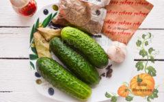 Hrustjashhie-malosolnye-ogurcy-recept-bystrogo-prigotovlenija